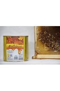 Θυμαρίσιο μέλι Καλύμνου 1850 γρ τενεκές